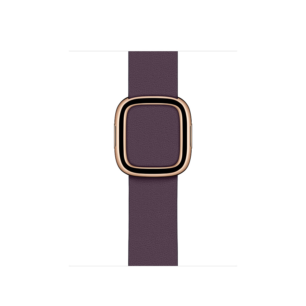 Apple Watch 40mm Aubergine Modern Buckle Small